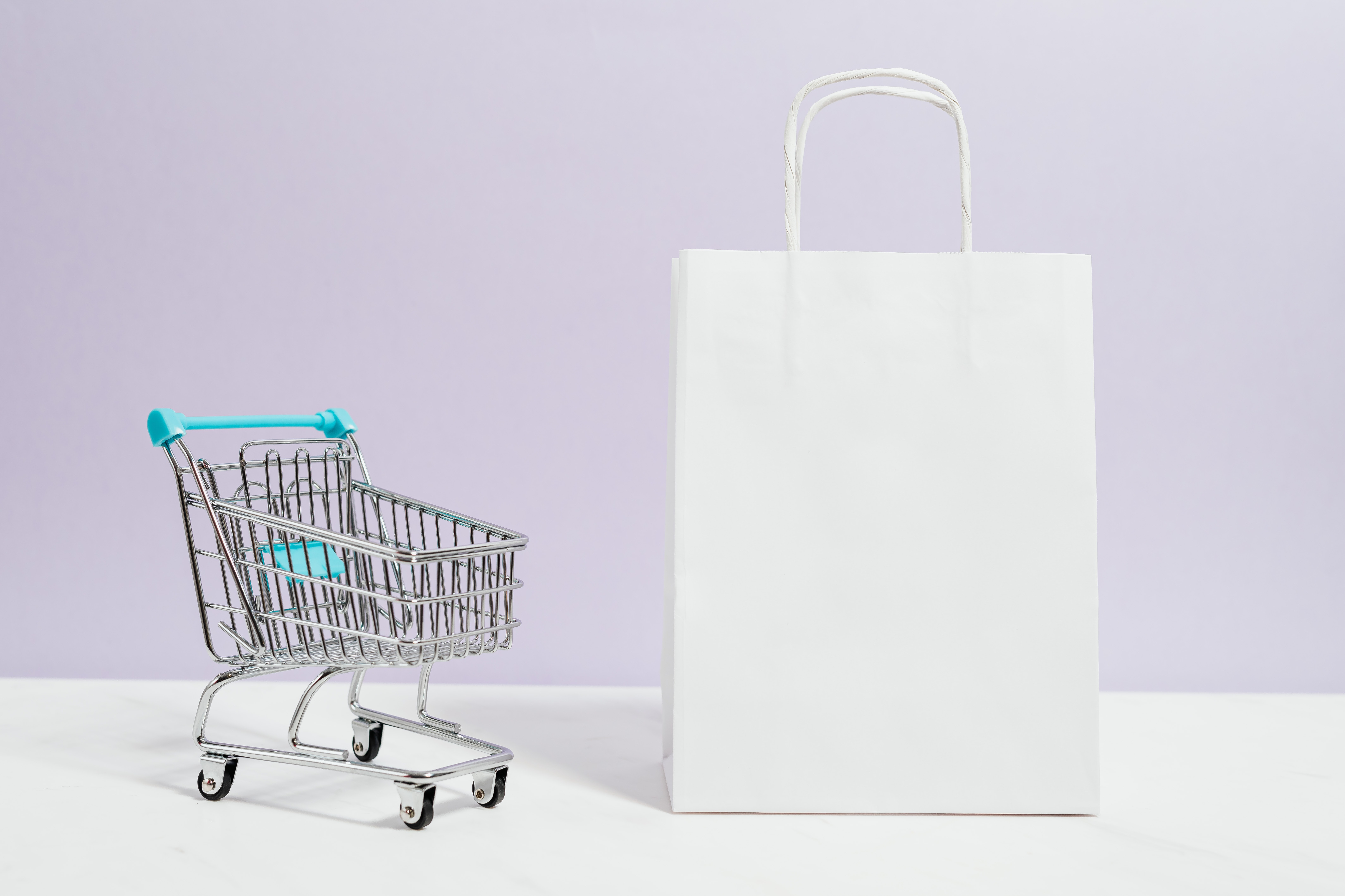 shopping trolley and grocery bag icon