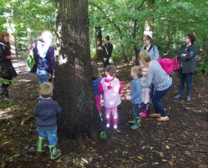 woodland wonders with EWT at Belfairs
