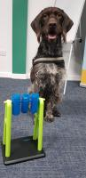 Angus at Landau Training and Enterprise centre in Stoke