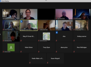 Screenshot of the SEND Inclusion Community Group meeting: 19th Jan 2021