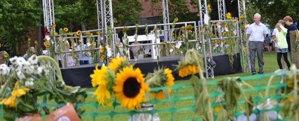 sunflowers_2_v2.jpg