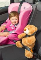 Picture of baby girl and teddy with seat belts
