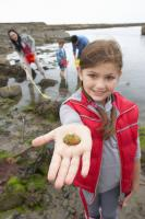 Picture of a girl rockpooling