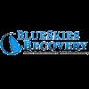 BlueSkies Recovery logo