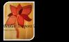 Beulah Tempora Logo, Orange flower image