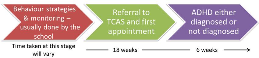 TCAS ADHD pathway