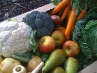 Fruit and vegetables in a pile