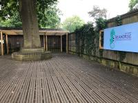 Outdoor play area with large tree