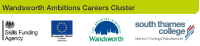 Wandsworth Ambitions Careers Cluster