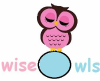 wise owls childcare