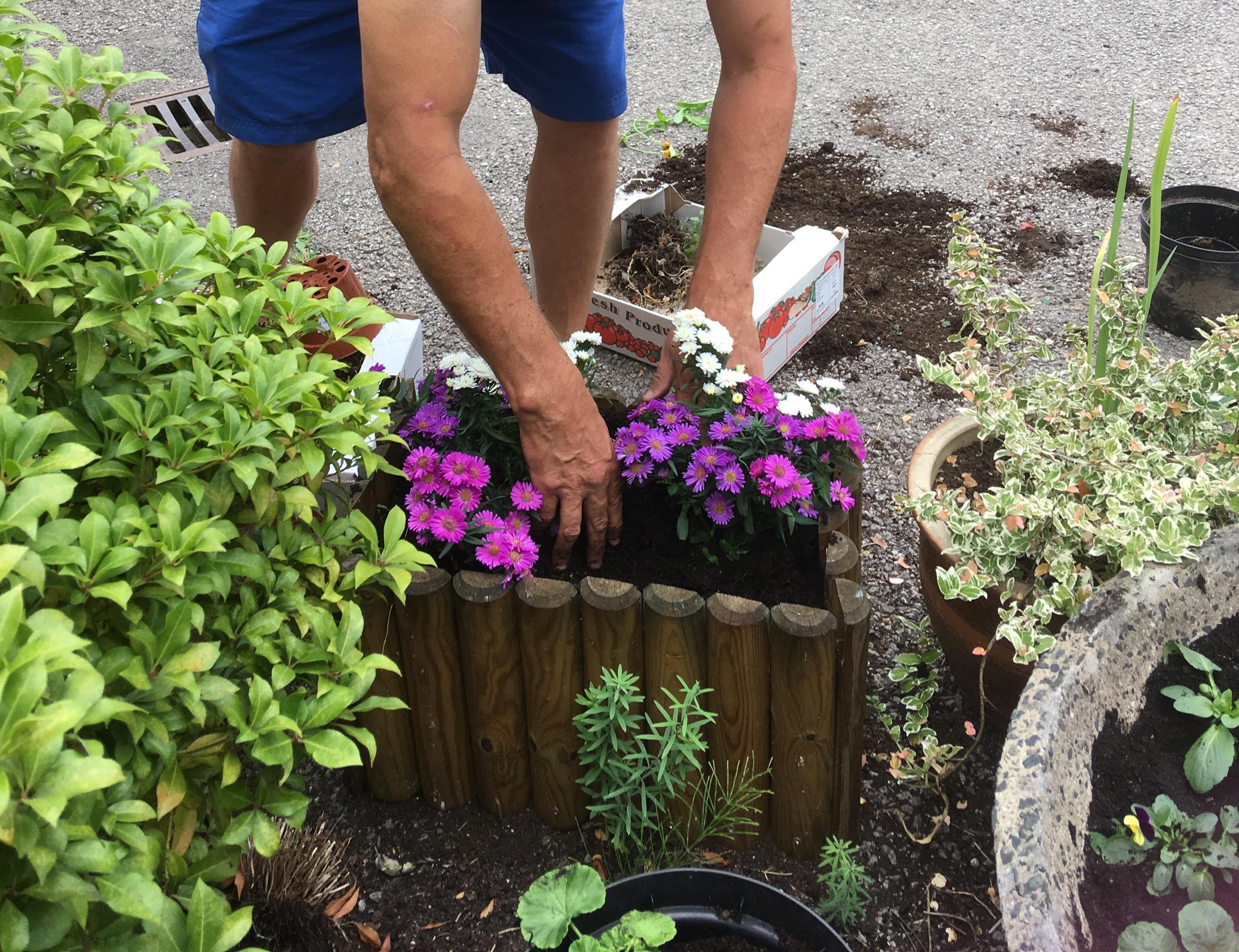 Gardening at Westmead