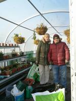 In the polytunnel on our allotments at Boundary Way.