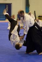 Aikido Throw1