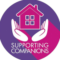 Supporting Companions